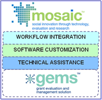 Services, diagram showing workflow integration, software customization and technical assistance related to GEMS